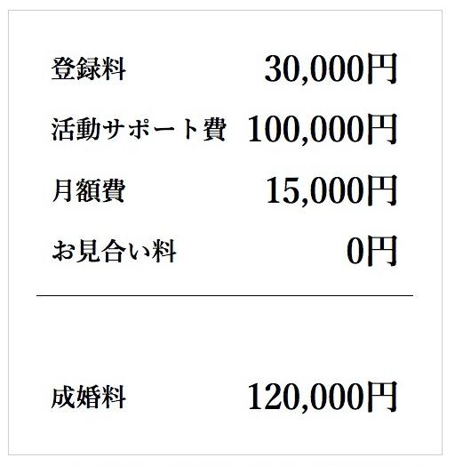 ヤングコースの料金プラン-1