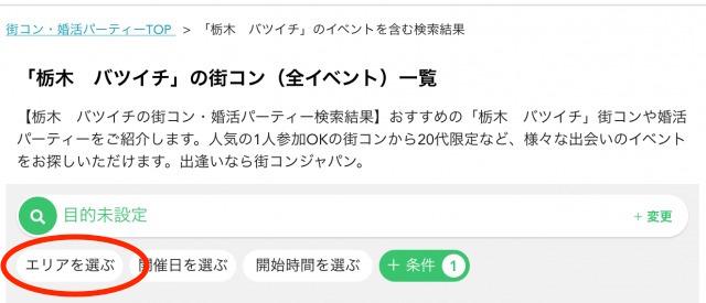 「栃木のバツイチ」検索画面イメージ-2